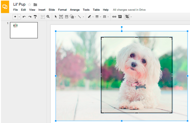 google-drive-cropping